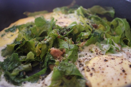 Eggs poached in greens 12